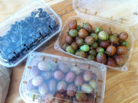 Laverstoke Park Farm organic, biodynamic blackcurrants and gooseberries